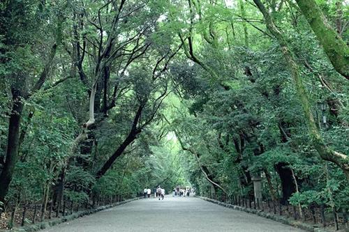 熱田神宮と紙の温度…そしてフレンチ