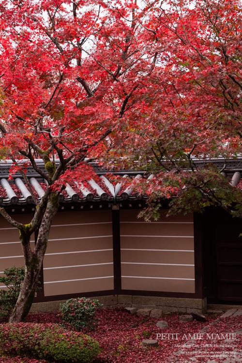 京都 紅葉 フォト